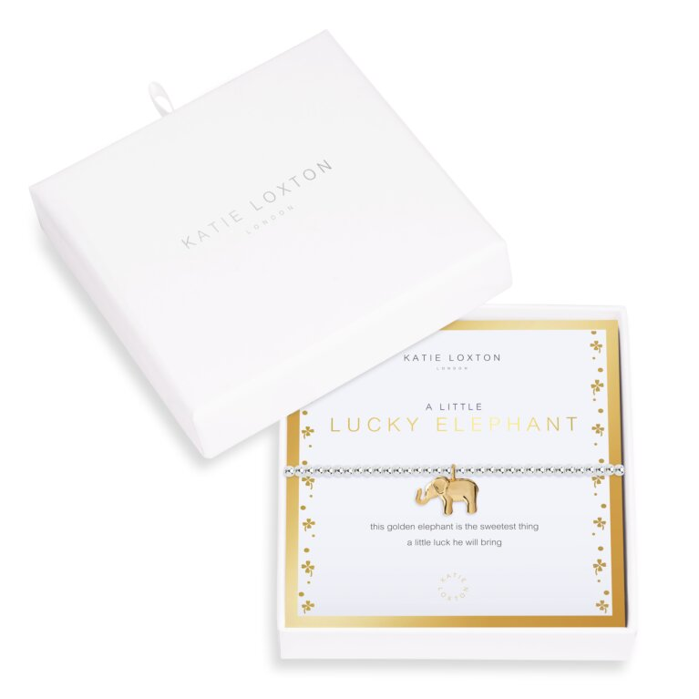 Beautifully Boxed A Littles Lucky Elephant