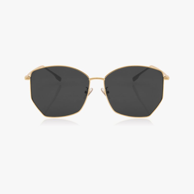 Havana Metal Sunglasses | Black