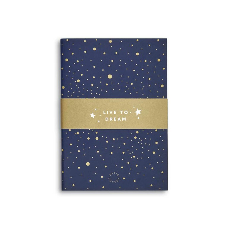 Duo Pack Notebooks | Navy and Gold